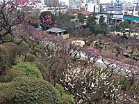 Ikegami6